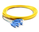 3m, 6 Fiber SC Pigtail, Single-mode, OS2