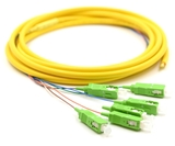3m, 6 Fiber SCAPC Pigtail, Single-mode, OS2