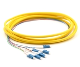 3m, 6 Fiber LC Pigtail, Single-mode, OS2